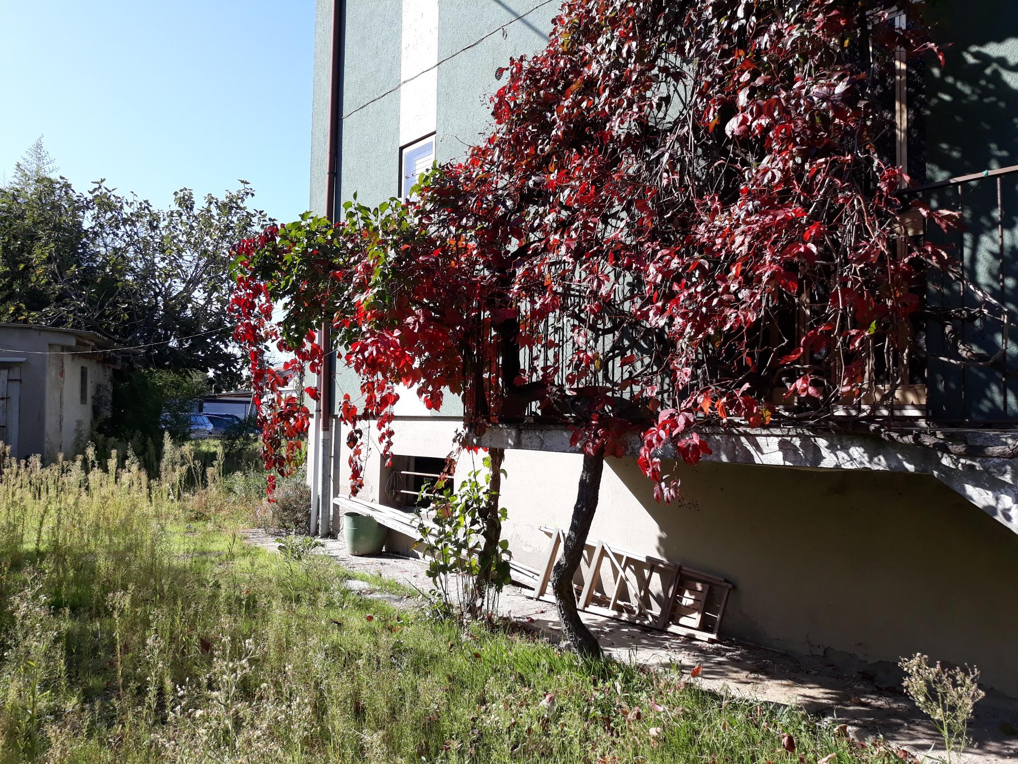 V-1086 – S. Mauro in Valle: casa singola con 2 appart. su lotto di mq. 1000